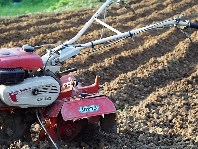 2016年産 備中白小豆「白備中」の栽培準備を進めています。
